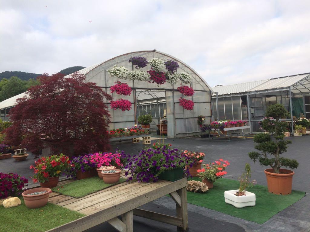 Centro Jardinería Gometxa