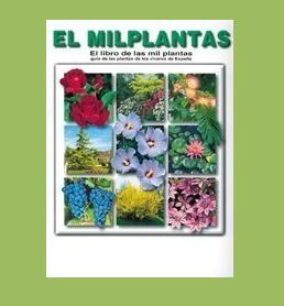 Texto Alternativo foto milplantas