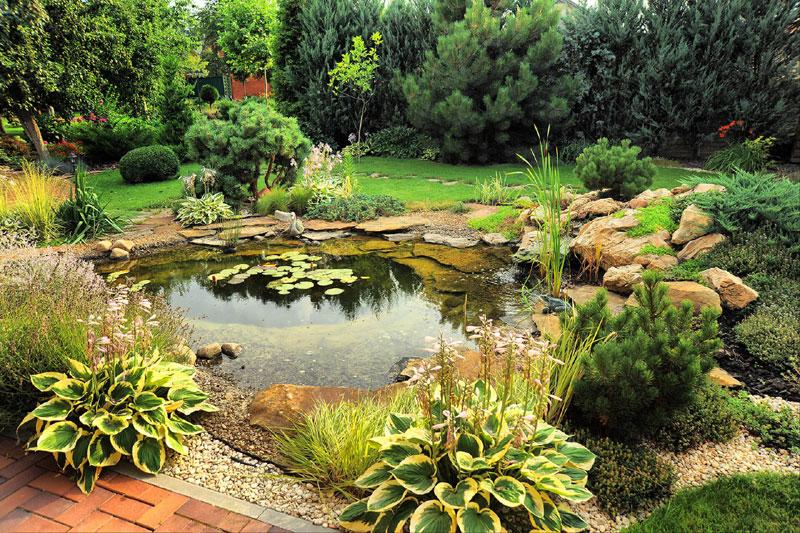 Servicio integral de jardineria